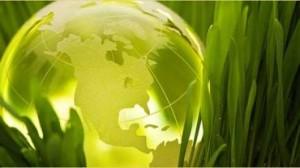 Россия и международные экологические организации: выгодно ли для России следовать их требованиям?